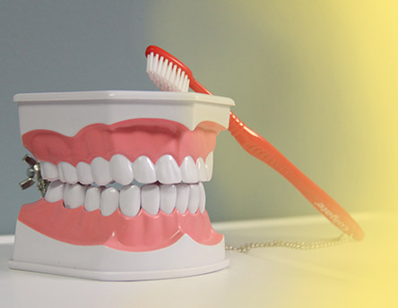Mount Pleasant Dental Cleaning